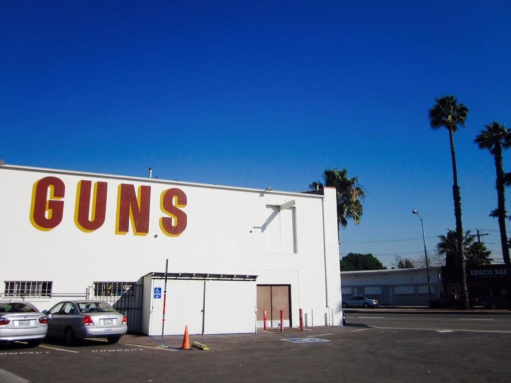 The 12 Reasons Why Americans Fail Federal Gun Background Checks